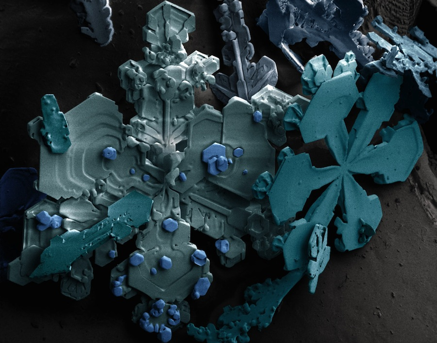 Snow crystals shown under an electron microscope
